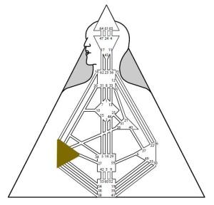 Centrul Intuiției (centrul Splină în Human Design)
